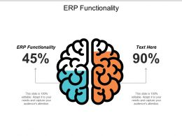 ERP Functionality Ppt Powerpoint Presentation Gallery Summary Cpb