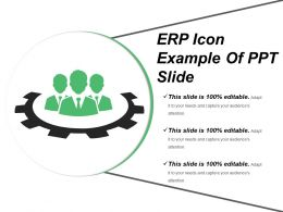 Erp Icon Example Of Ppt Slide