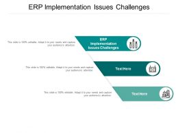 ERP Implementation Issues Challenges Ppt Powerpoint Presentation Example 2015 Cpb