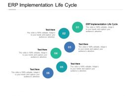 ERP Implementation Life Cycle Ppt Powerpoint Presentation Infographic Template Structure Cpb
