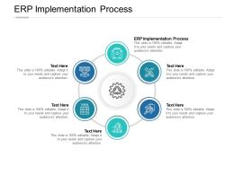 ERP Implementation Process Ppt Powerpoint Presentation Summary Cpb