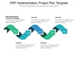 ERP Implementation Project Plan Template Ppt Powerpoint Presentation Cpb