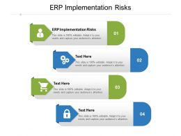 ERP Implementation Risks Ppt Powerpoint Presentation Model File Formats Cpb