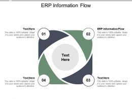 ERP Information Flow Ppt Powerpoint Presentation Outline Format Cpb