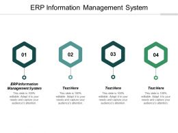 ERP Information Management System Ppt Powerpoint Presentation File Backgrounds Cpb