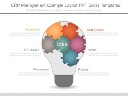 Erp Management Example Layout Ppt Slides Templates
