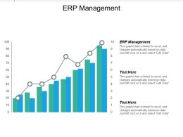 Erp Management Ppt Powerpoint Presentation Icon Outfit Cpb