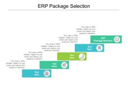 ERP Package Selection Ppt Powerpoint Presentation Layouts Tips Cpb