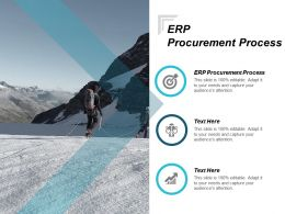 ERP Procurement Process Ppt Powerpoint Presentation Portfolio Images Cpb