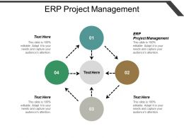 Erp Project Management Ppt Powerpoint Presentation Layouts Layouts Cpb