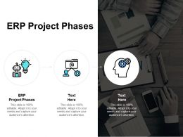 ERP Project Phases Ppt Powerpoint Presentation Summary Icons Cpb