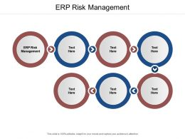ERP Risk Management Ppt Powerpoint Presentation Professional Summary Cpb