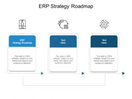 ERP Strategy Roadmap Ppt Powerpoint Presentation Professional Structure Cpb