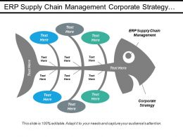 Erp Supply Chain Management Corporate Strategy Financial Risk Cpb
