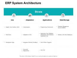 ERP System Architecture Ppt Powerpoint Presentation File Background Image