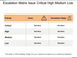 Escalation Matrix Issue Critical High Medium Low