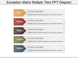Escalation Matrix Multiple Tiers Ppt Diagram