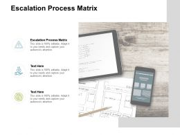 Escalation Process Matrix Ppt Powerpoint Presentation Ideas Icon Cpb