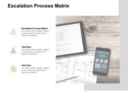 Escalation Process Matrix Ppt Powerpoint Presentation Ideas Icon Cpb