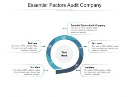 Essential Factors Audit Company Ppt Powerpoint Presentation Infographic Backgrounds Cpb