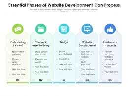 Essential Phases Of Website Development Plan Process