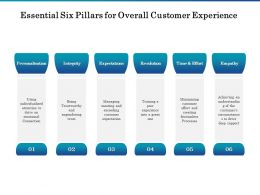 Essential Six Pillars For Overall Customer Experience Ppt Professional Summary