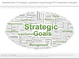 Essential Skills For Strategic Leadership Energy Storage Ppt Presentation Examples
