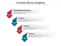 Essentials Effective Budgeting Ppt Powerpoint Presentation Layouts Slides Cpb