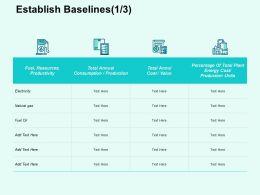 Establish Baselines Productivity Ppt Powerpoint Presentation Professional Example