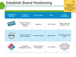 Establish Brand Positioning Ppt Background