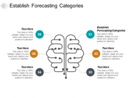 Establish Forecasting Categories Ppt Powerpoint Presentation Slides Graphic Images Cpb