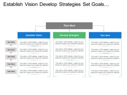 Establish Vision Develop Strategies Set Goals Implement Monitor