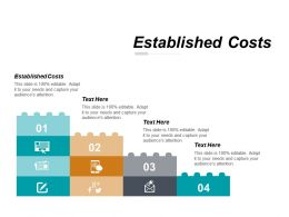 Established Costs Ppt Powerpoint Presentation Slides Graphic Tips Cpb