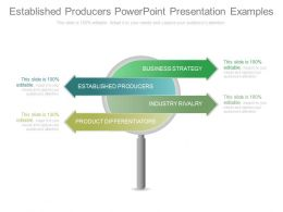 Established Producers Powerpoint Presentation Examples