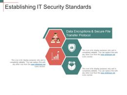 Establishing It Security Standards Ppt Example File