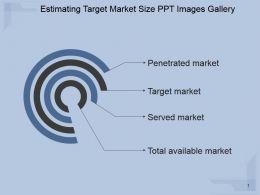 Estimating Target Market Size Ppt Images Gallery
