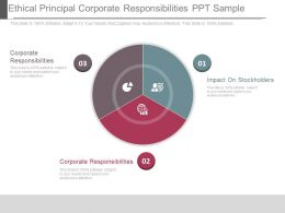 Ethical Principal Corporate Responsibilities Ppt Sample