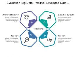 Evaluation Big Data Primitive Structured Data Utilization Agile Development