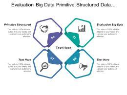 Evaluation Big Data Primitive Structured Data Utilization Agile Development
