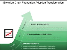 Evolution Chart Foundation Adoption Transformation