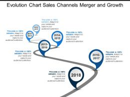 Evolution Chart Sales Channels Merger And Growth