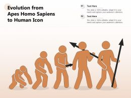 Evolution From Apes Homo Sapiens To Human Icon