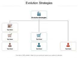 Evolution Strategies Ppt Powerpoint Presentation Show Cpb