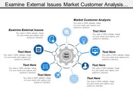 Examine External Issues Market Customer Analysis Formulating Strategies