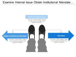 Examine Internal Issue Obtain Institutional Mandate Market Competition