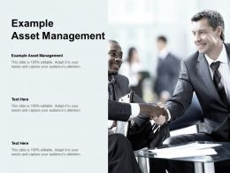 Example Asset Management Ppt Powerpoint Presentation Pictures Slide Download Cpb