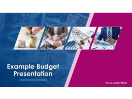 example_budget_presentation_powerpoint_presentation_slides_Slide01