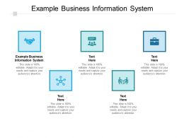 Example Business Information System Ppt Powerpoint Presentation Slides Cpb