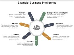 Example Business Intelligence Ppt Powerpoint Presentation File Visual Aids Cpb