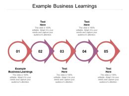 Example Business Learnings Ppt Powerpoint Presentation Infographic Template Diagrams Cpb